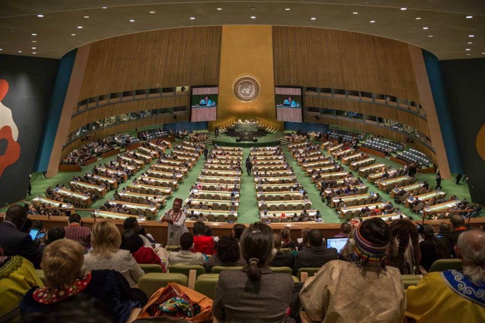 the un declaration on the rights of indigenous peoples  10 year anniversary